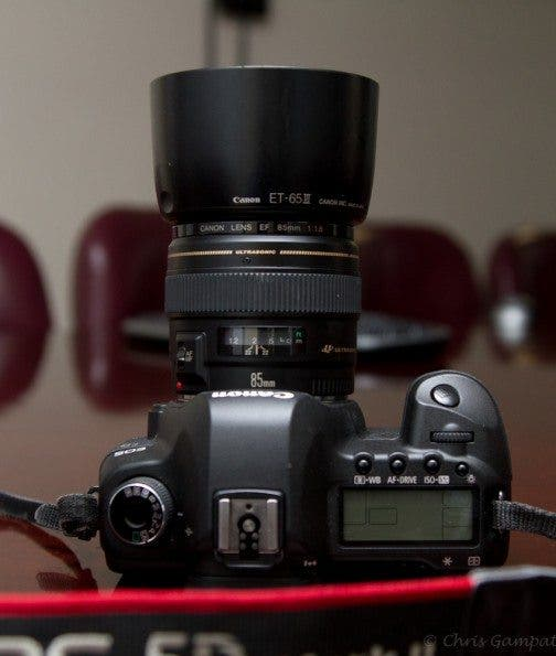 Long Term Review: Canon 85mm F/1 8 Lens - The Phoblographer