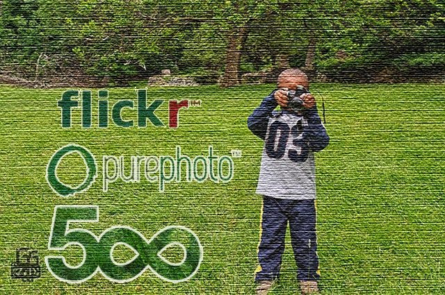 Op/Ed: On sharing photos: Flickr, Pure Photo and 500px