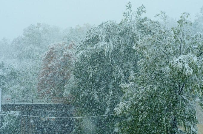 Our first snowfall - in October!