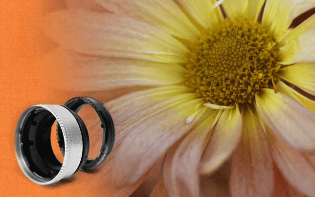 New Lensbaby Macro Converters Give Lensbaby Shooters Limitless Close-Focus Options