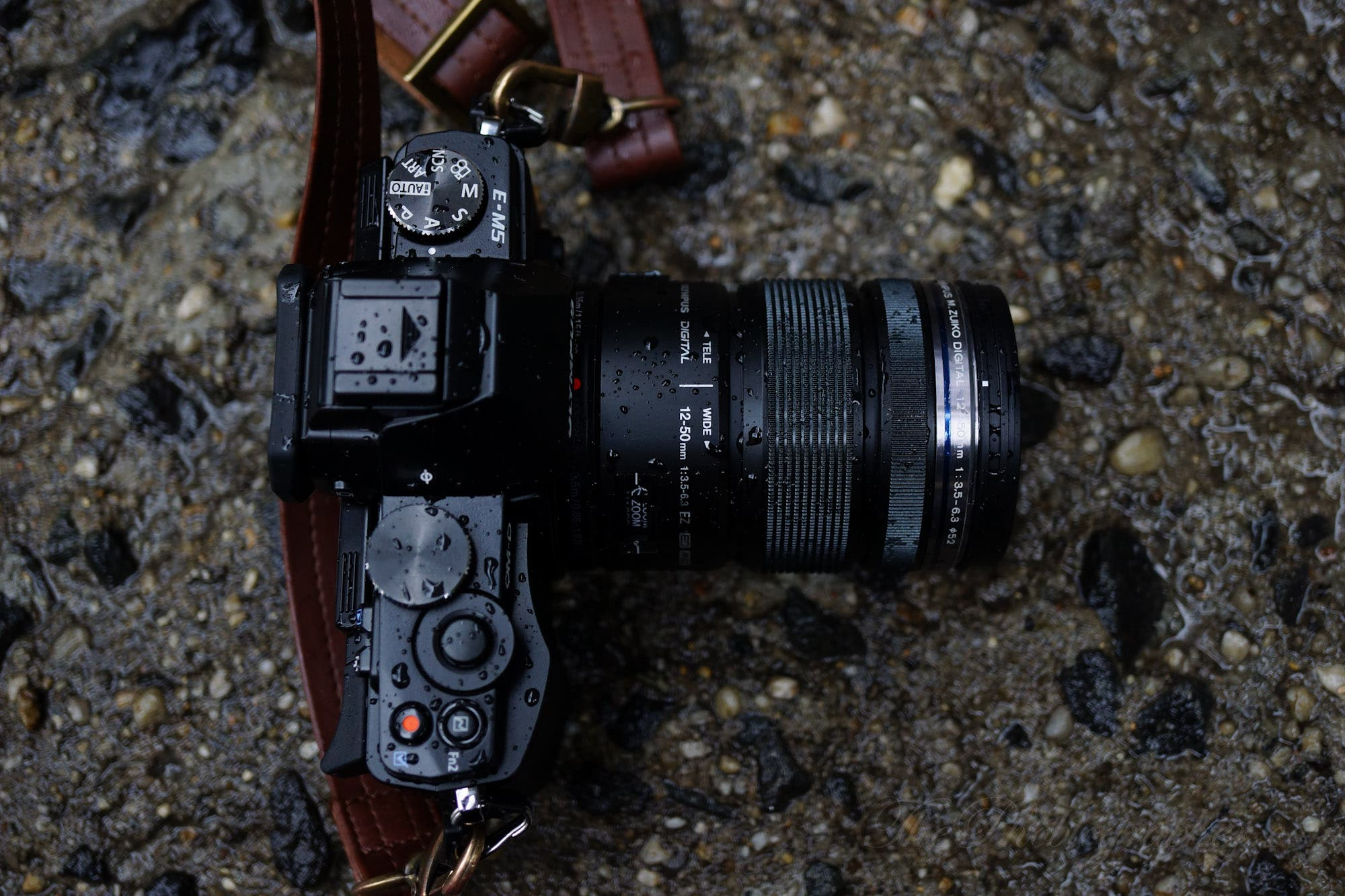 The Olympus EM5 (E M5 or EM 5) OMD is a camera that is tough on the  #7A6F51