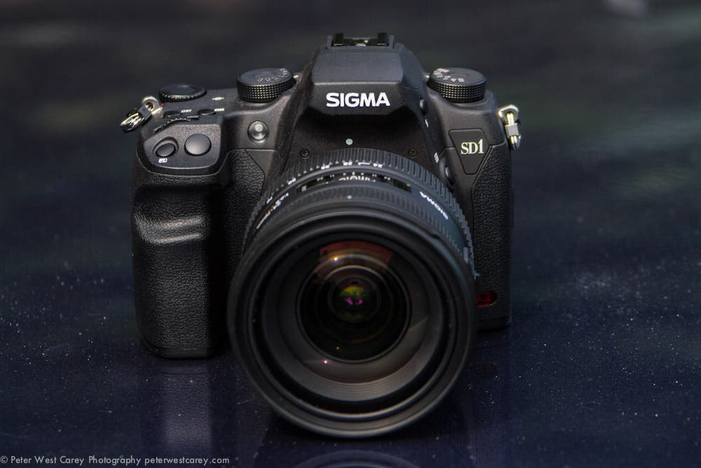 Testing the Sigma SD1 Merrill In the Studio