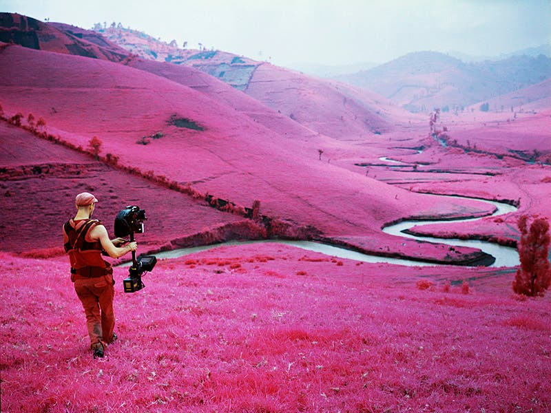 What is Kodak Aerochrome? A Beginner's Guide to The Confusion of Lomochrome Purple