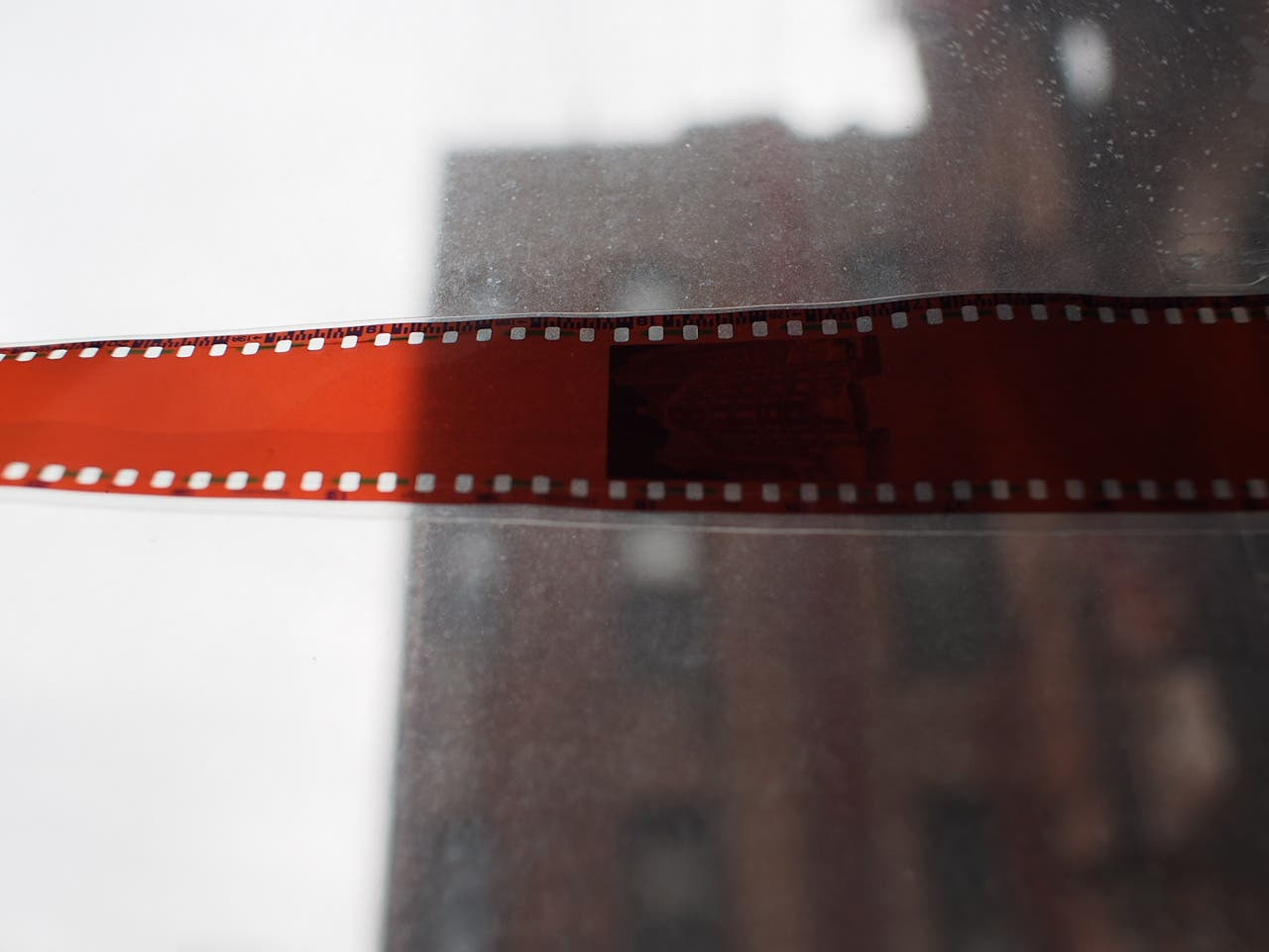 Op ED: How Film Photography Sometimes Breaks My Heart