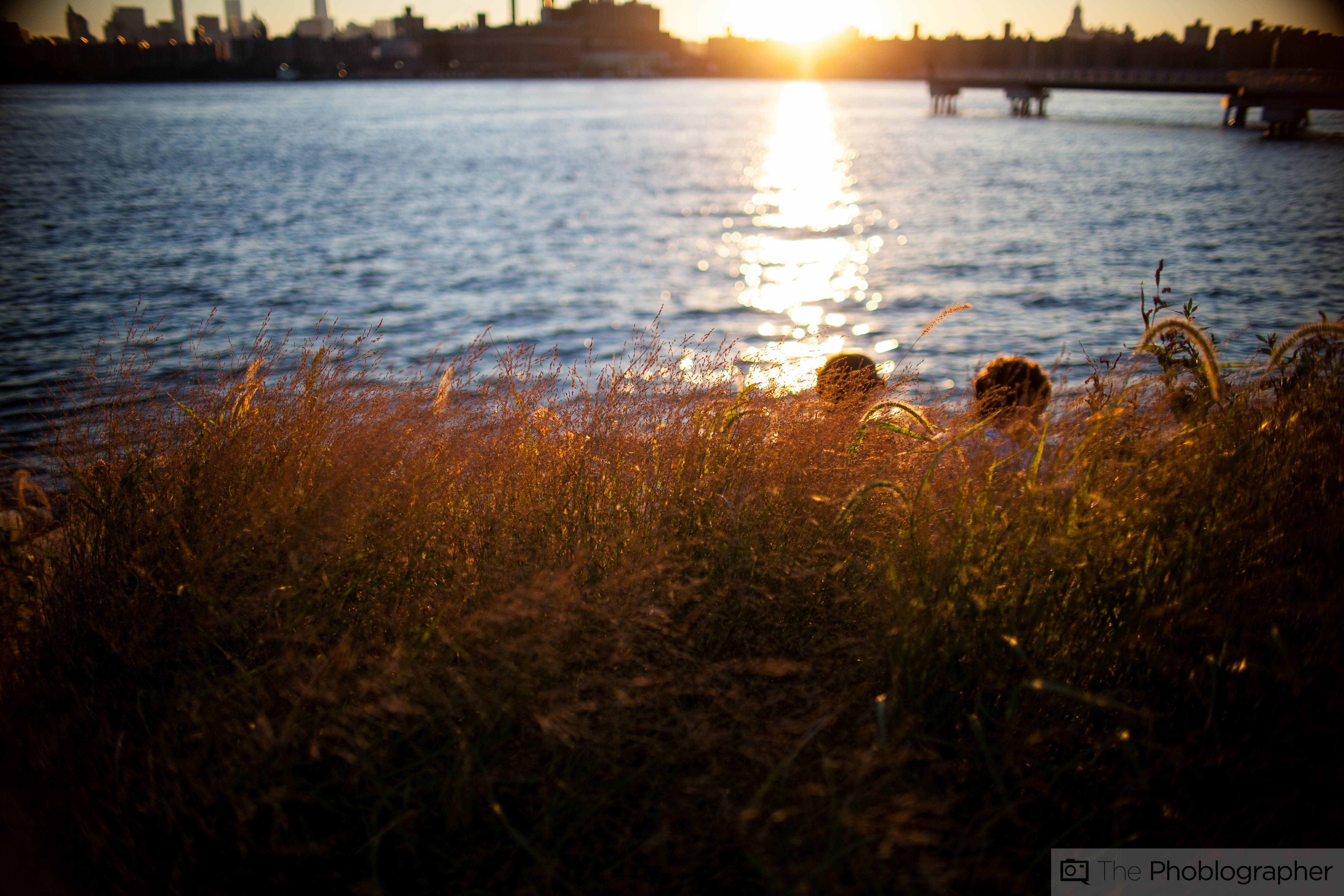 Review: Sigma 30mm f1.4 II (Canon EF) - The Phoblographer