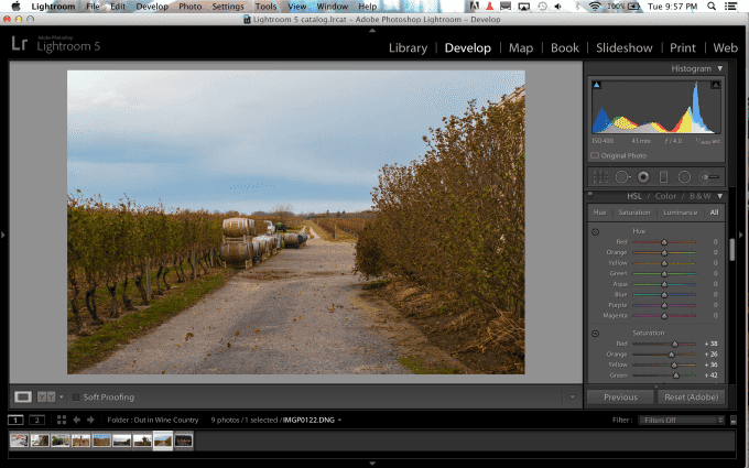 Useful Photography Tip #74: Don't Forget About the Color Channel Tools in Lightroom
