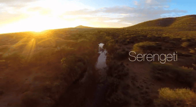 Wildlife Photographer Releases an Inspiring Aerial Footage of the Wild Plains of the Serengeti - The Phoblographer