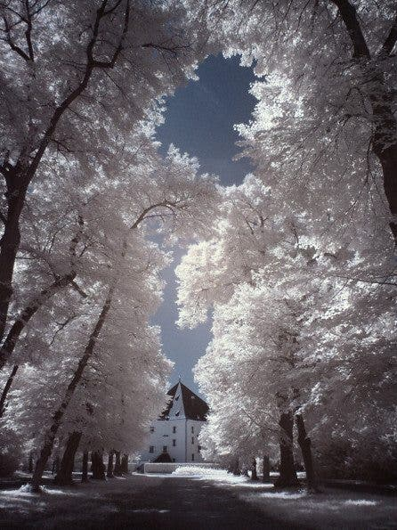 Shooting Digital Photographs Through >> Be Inspired by These Cool Digital Infrared Images by a Prague-Based Photographer - The Phoblographer