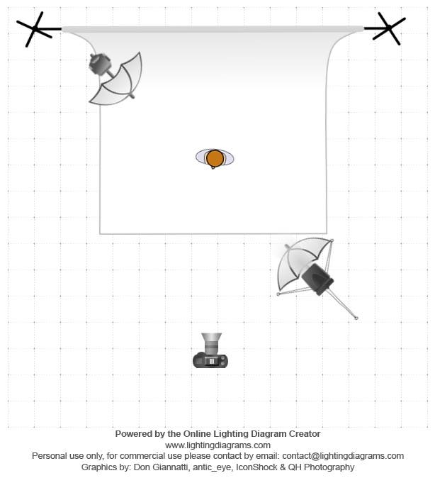 lighting-diagram-1392262821