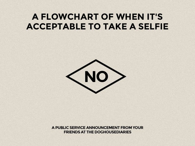 Before Setting Out to Snap Your Next Selfie, You Should Consult This Infographic