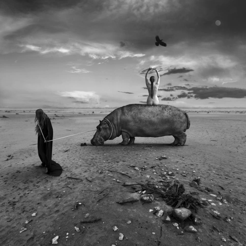 Dariusz Klimczak's Surreal Images Will Inspire Your Darker Half