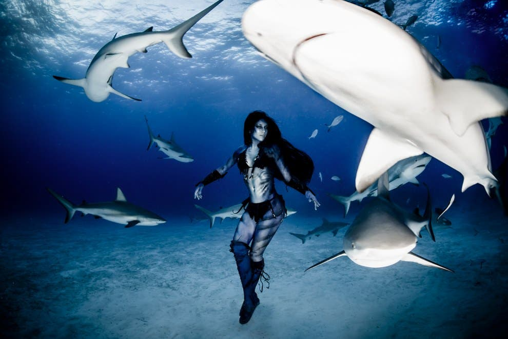Woman Dances with Tiger Sharks in Conservancy Photo Project