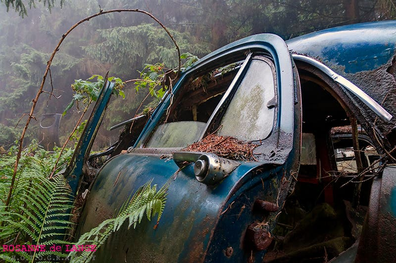 Rosanne de Lange's Photographs of the Chatillon Car Graveyard