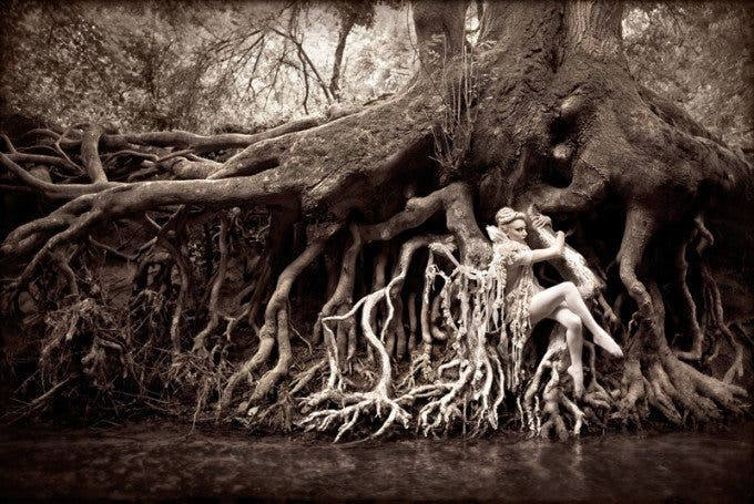 Kristy Mitchell Wonderland Dryad