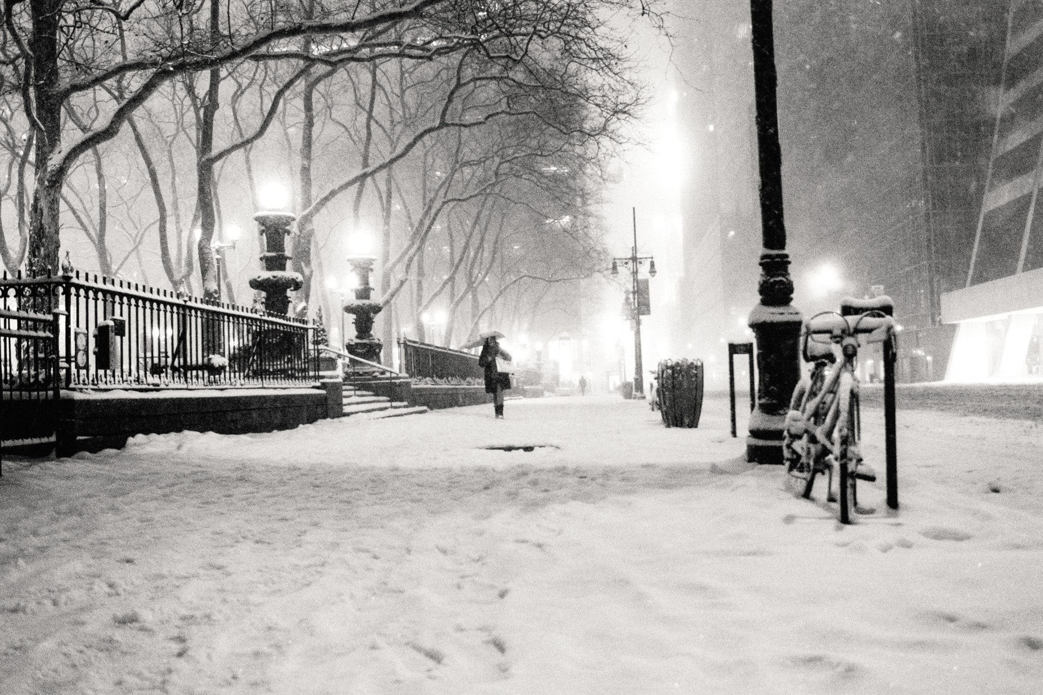 Vivienne Gucwas Photos Of The Snow In NYC