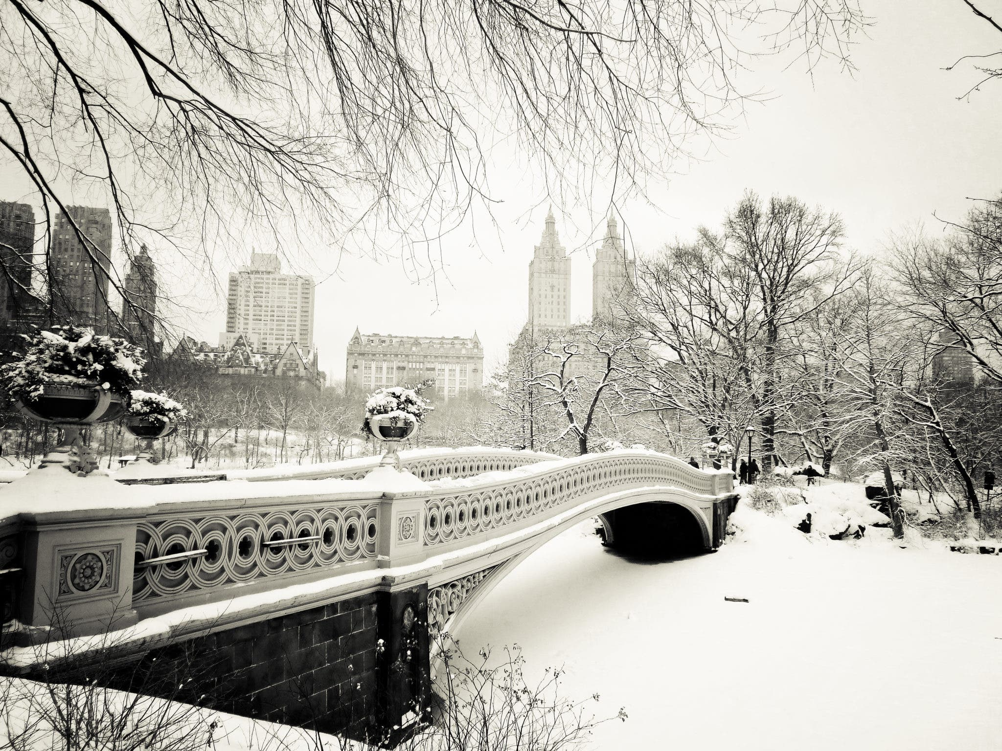 a winter's tale - new york winter - central park snow