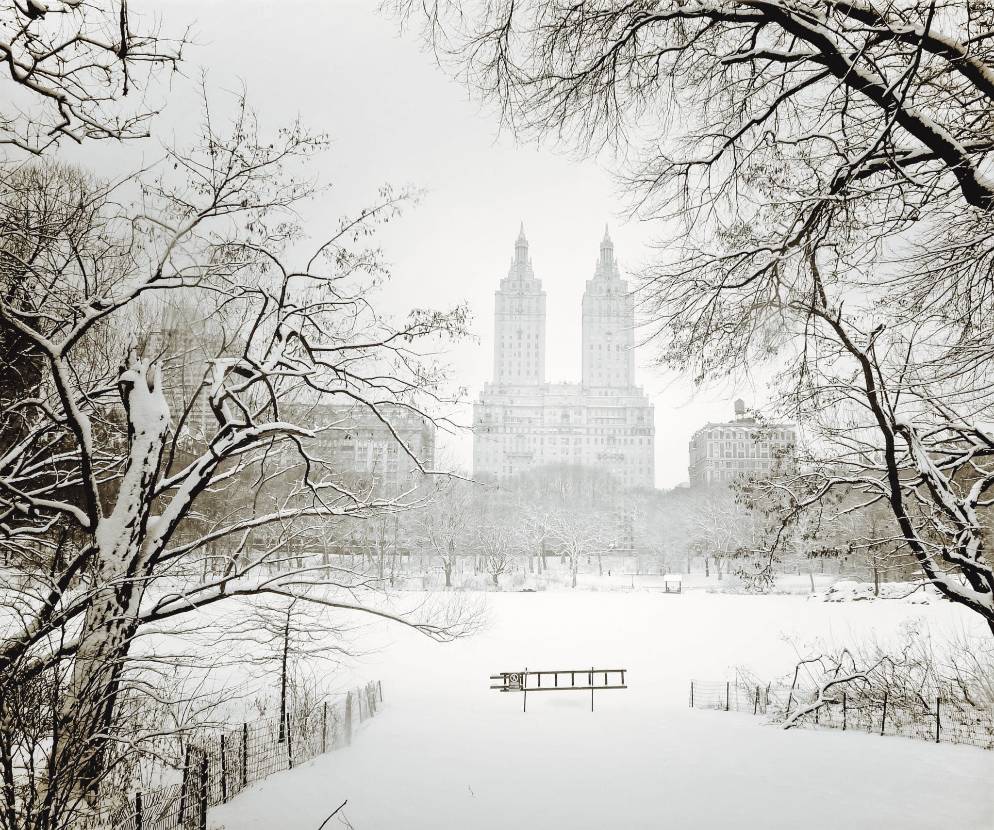 Central Park New York: Vivienne Gucwa's Photos Of The Snow In NYC
