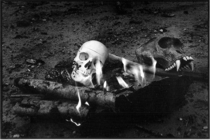 Fake human, Real gorilla skull and fire 35mm film