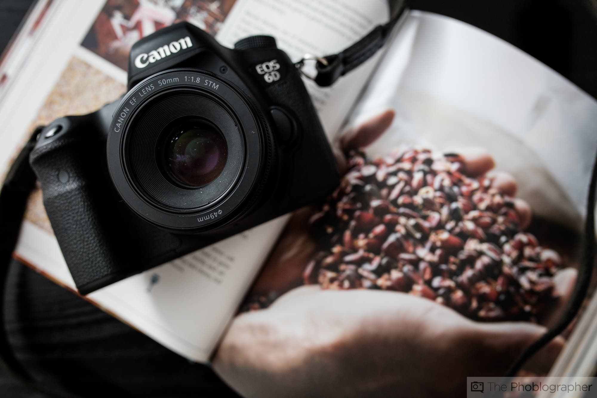Review: Canon 50mm f1.8 STM (Canon EF)