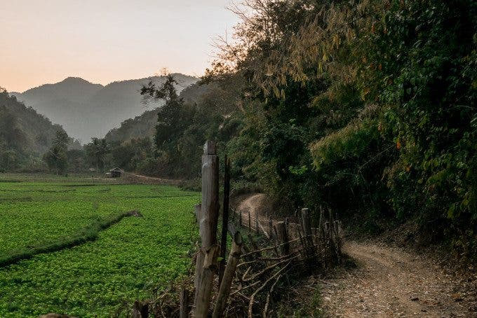 The remote location of some villages near the Thailand-Myanmar border is a contributing factor to the risk of girls being trafficked.  This 16 km trail is the only way for one village's children to reach the nearest school in Ban Tha Ta Fang, which even then only offers classes up to 6th grade.