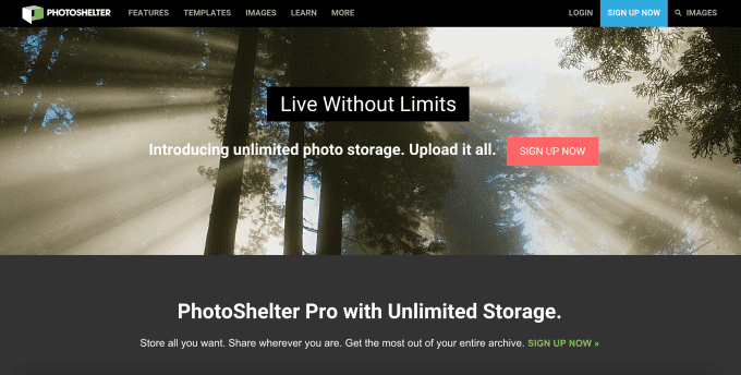 PhotoShelter Is Giving Its Pro Members Unlimited Storage - Photoshelter templates