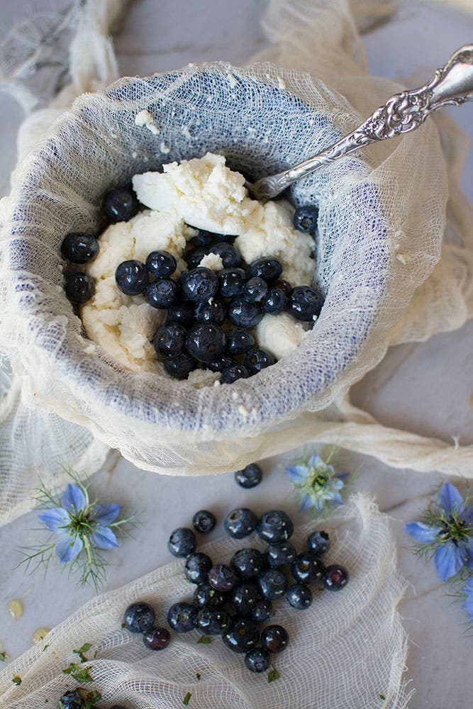Blueberries & Ricotta Cheese II