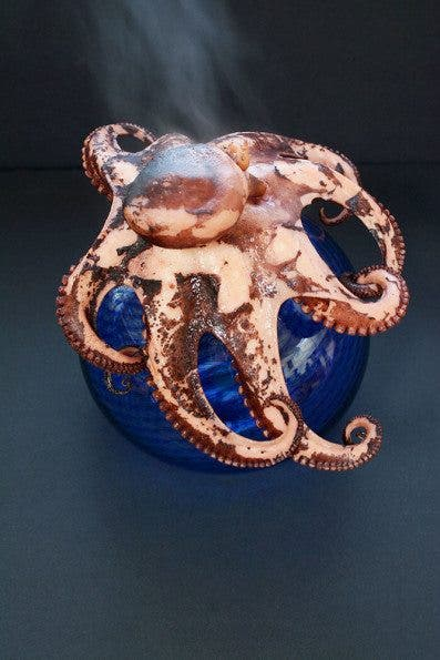 Octopus Steaming