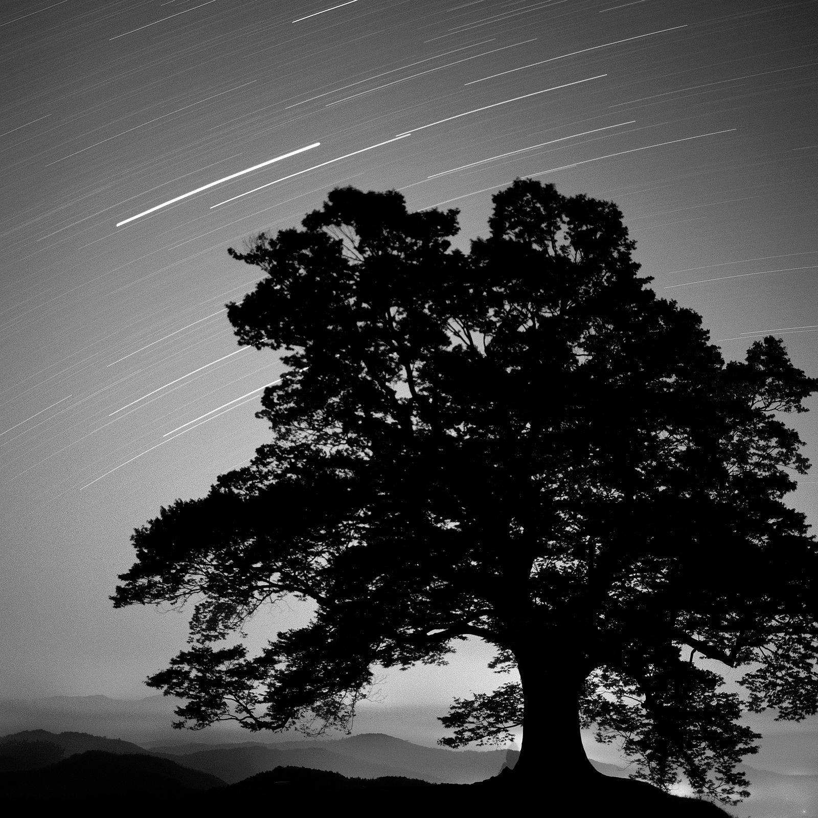 Jisoo Kang - Star Dust - 1st place in SPECIAL LONG EXPOSURE - 4