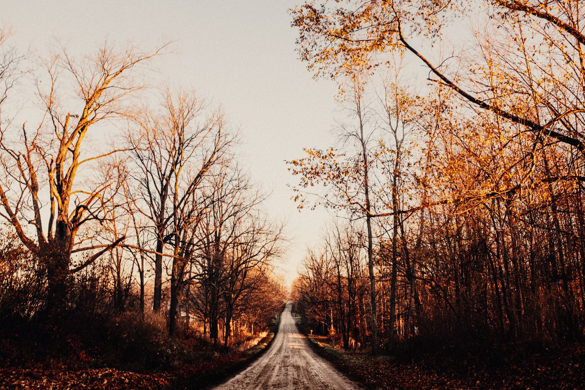 Bryan Minear: On Mobile Photography and Landscapes