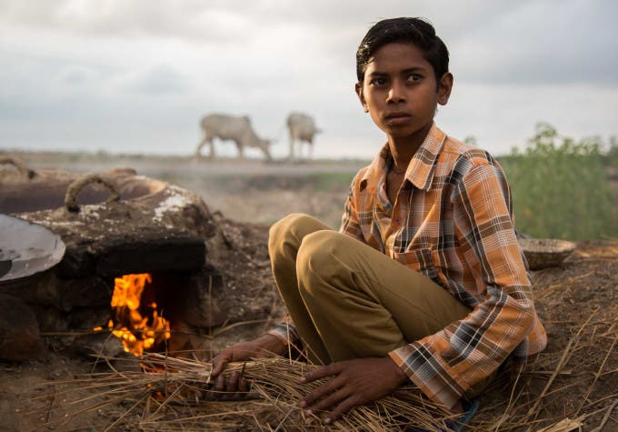 Boy in field: mayank_1269@yahoo.com (Mayank)