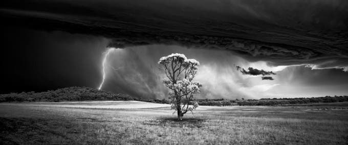 Monochrome_Photographer_of_the_Year_2015_Professional-Barossa_Bolt_by_Luke_Tscharke