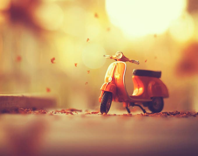 Autumn's-arrival_Ashraful