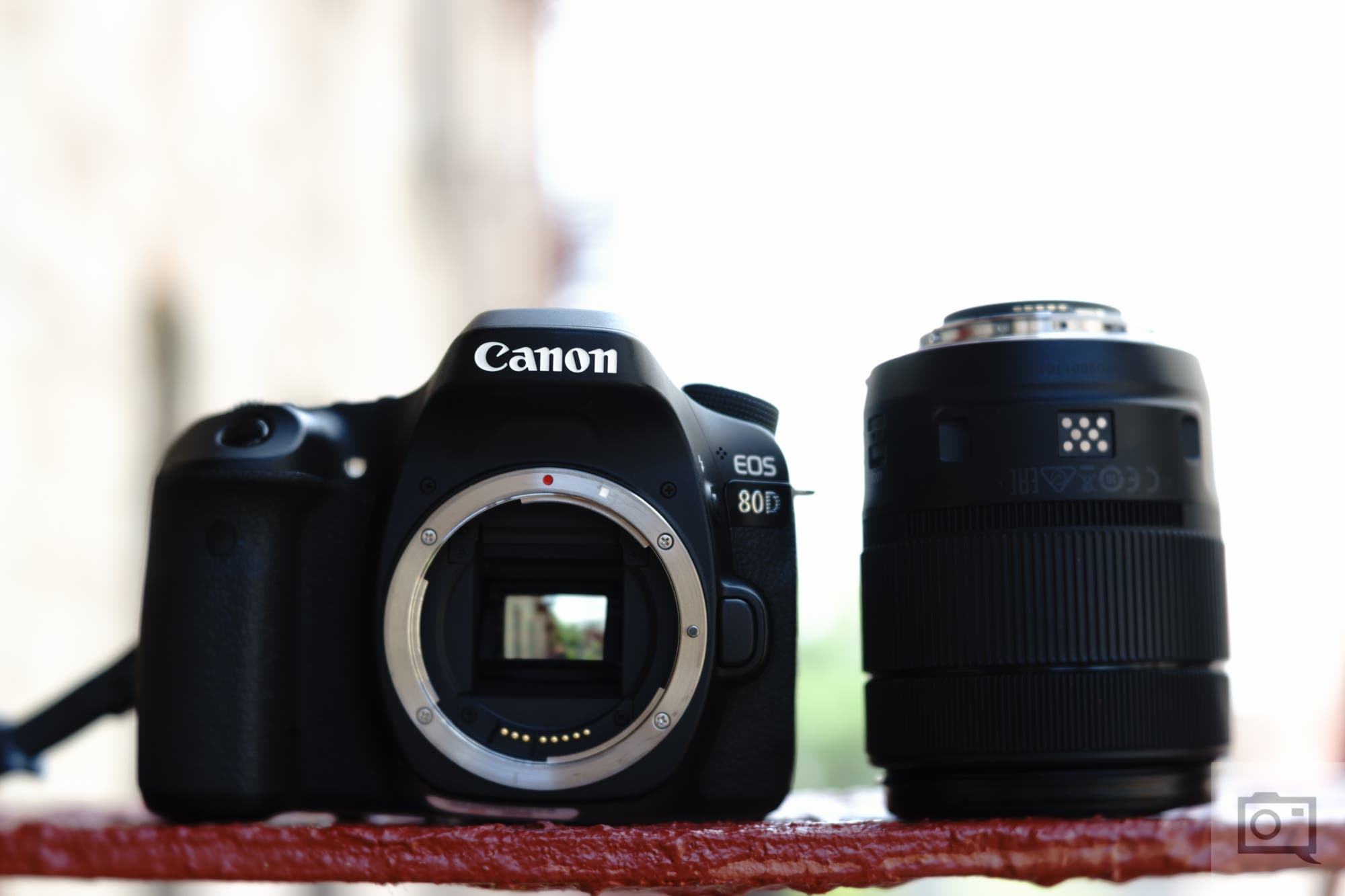 Upgrading from the Canon Rebel: A Guide on Choosing Your