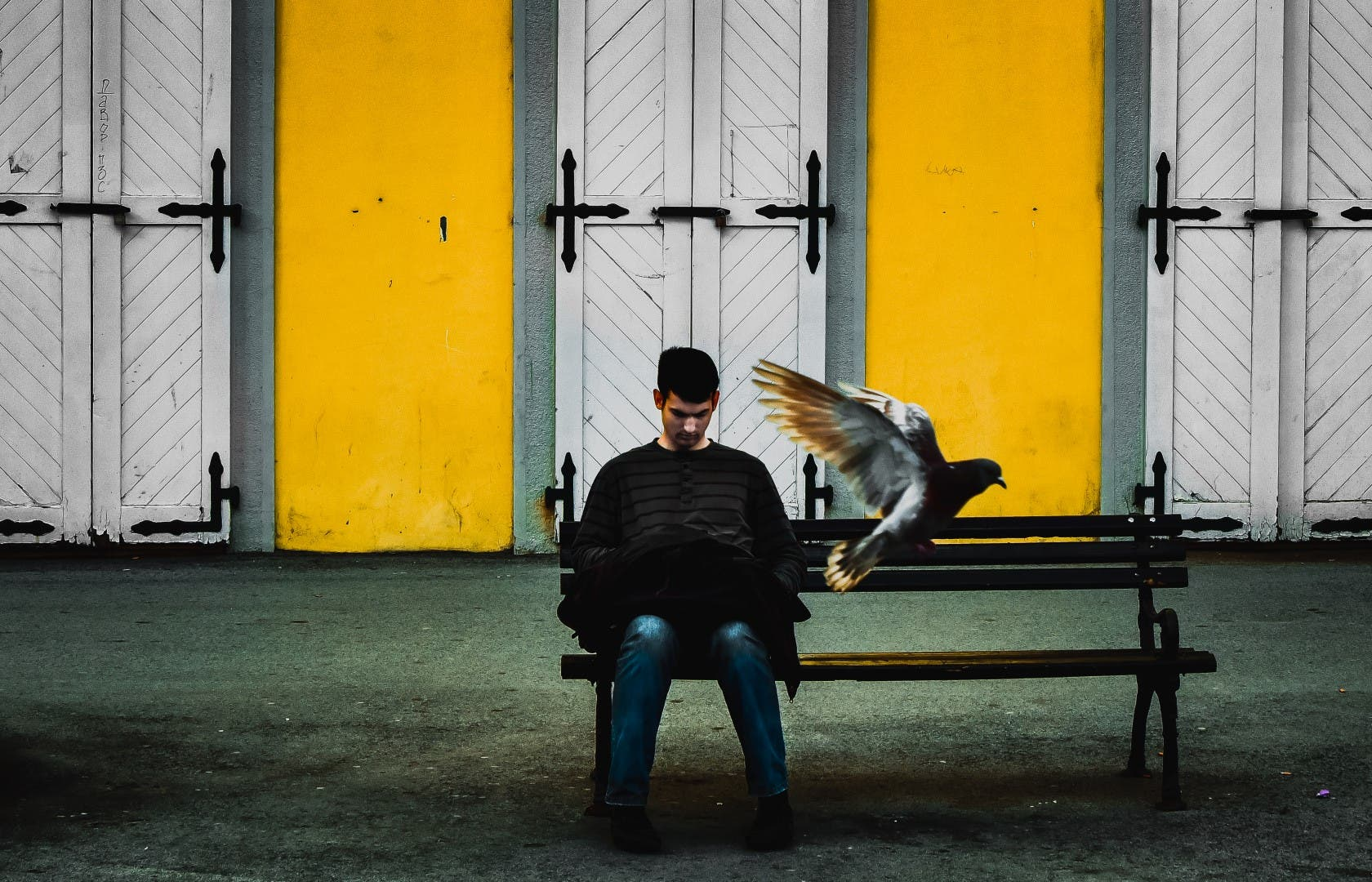 Zlatko Vickovic: On the Specific Use of Color in a Photo