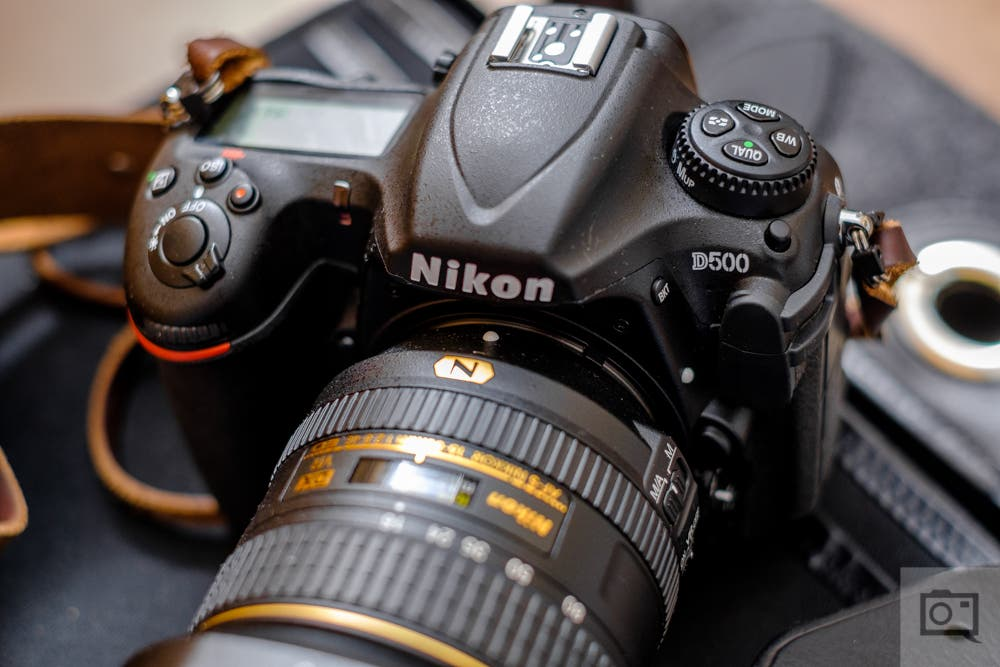 The Five Cameras Every Sports Photographer Should Consider