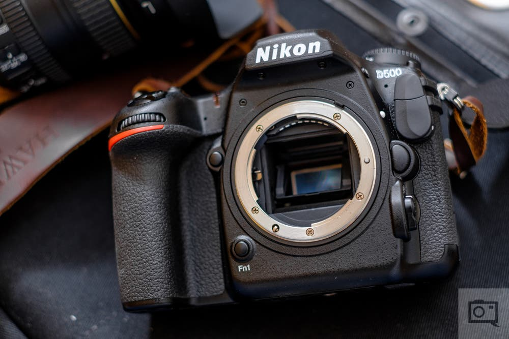 End of an Era: The Last Great DSLR Cameras to Consider Buying Today