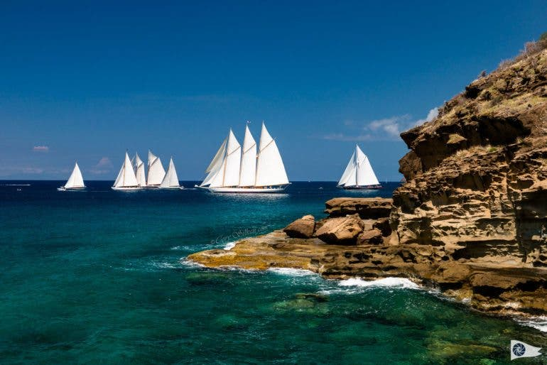 Butterfly Race start at the Antigua Classic Yacht Regatta.