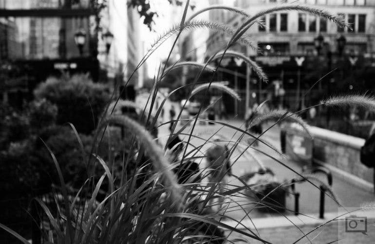 chris-gampat-the-phoblographer-jch-street-pan-400-sample-images-23-of-40