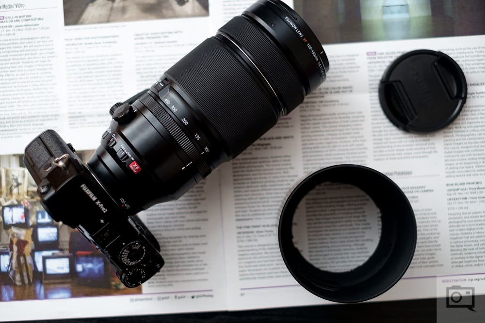 3 of Our Favorite Super Telephoto Lenses for Captivating Wildlife Photography