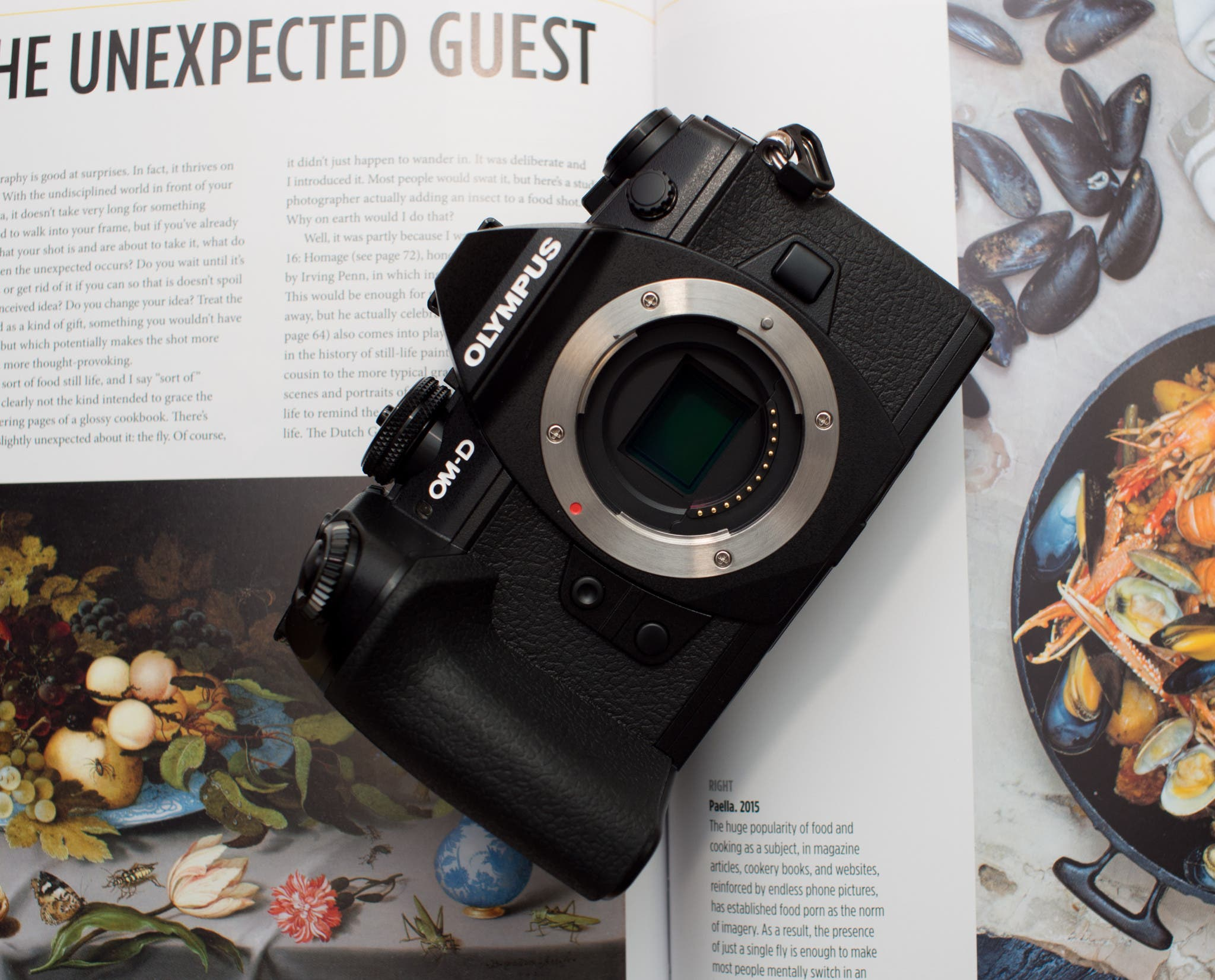 Extended First Look: The Olympus OM-D E-M1 Mark II