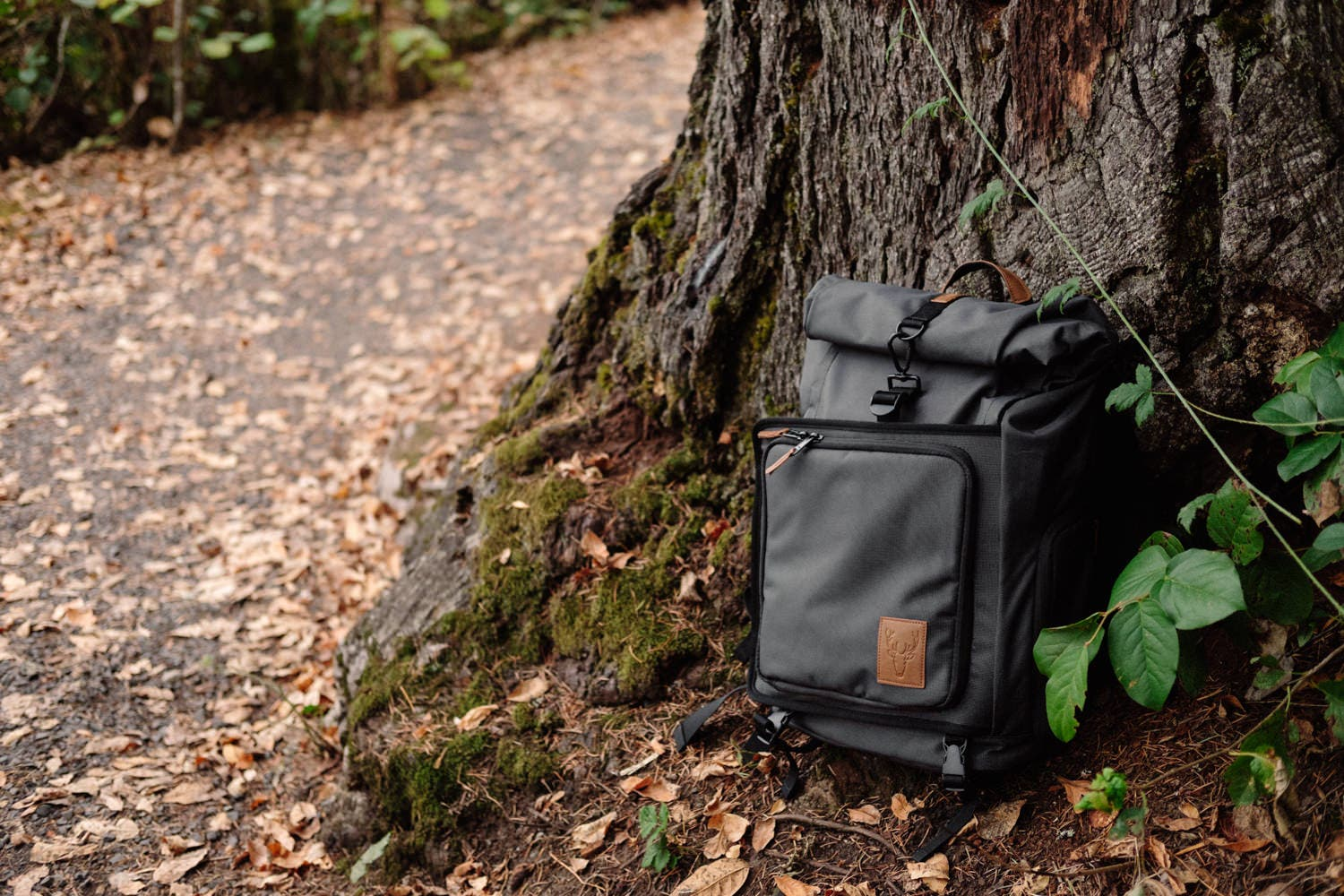 Review: Brevite Rolltop Camera Bag