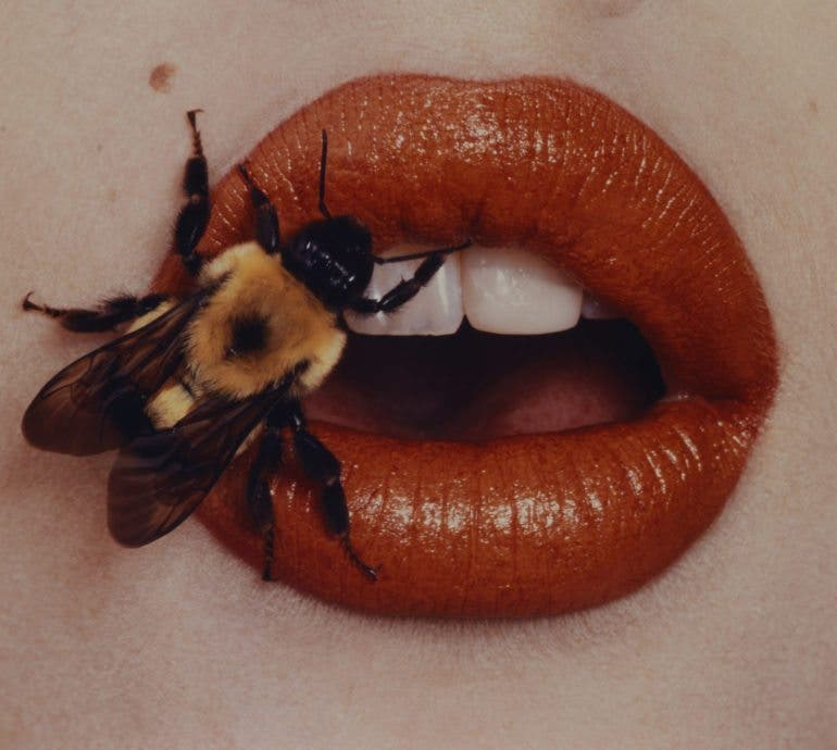 Previously Unseen Photos from Irving Penn to Appear in Retrospective