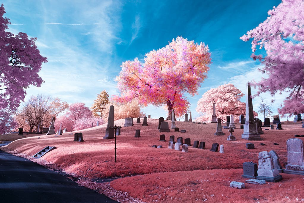 Jack Seikaly: Digital Infrared Photography Influenced by Kodak Aerochrome