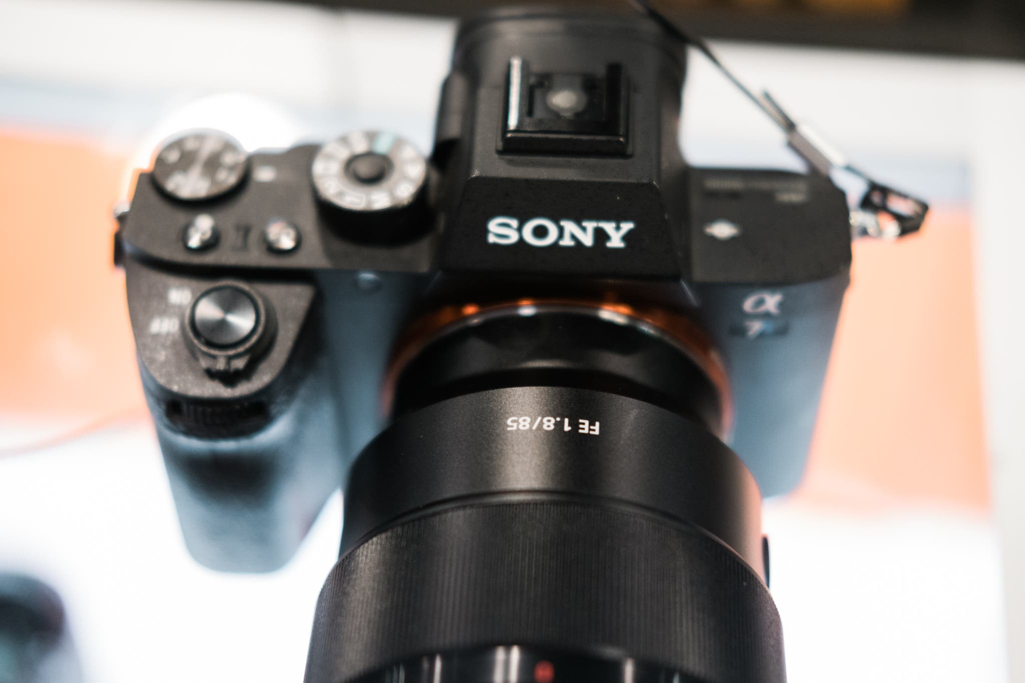 First Samples: Sony 85mm f1.8 FE and Sony 100mm f2.8 STM G Master FE