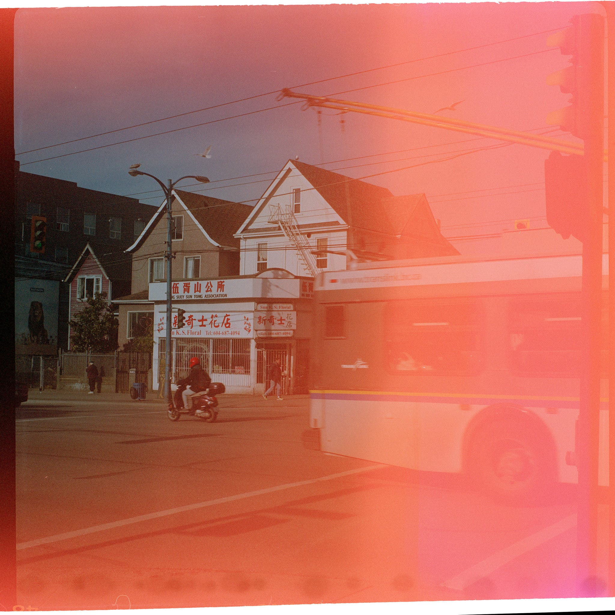 What Happens When You Shoot With Expired Film?