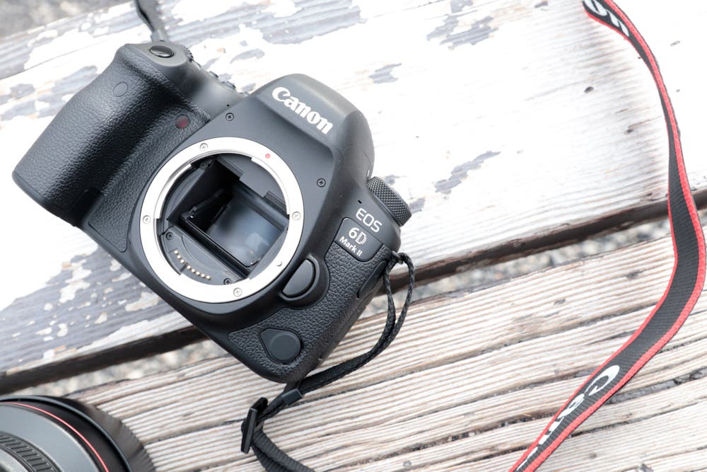 First Impressions: Canon 6D Mk II (In Use at Yellowstone National Park)