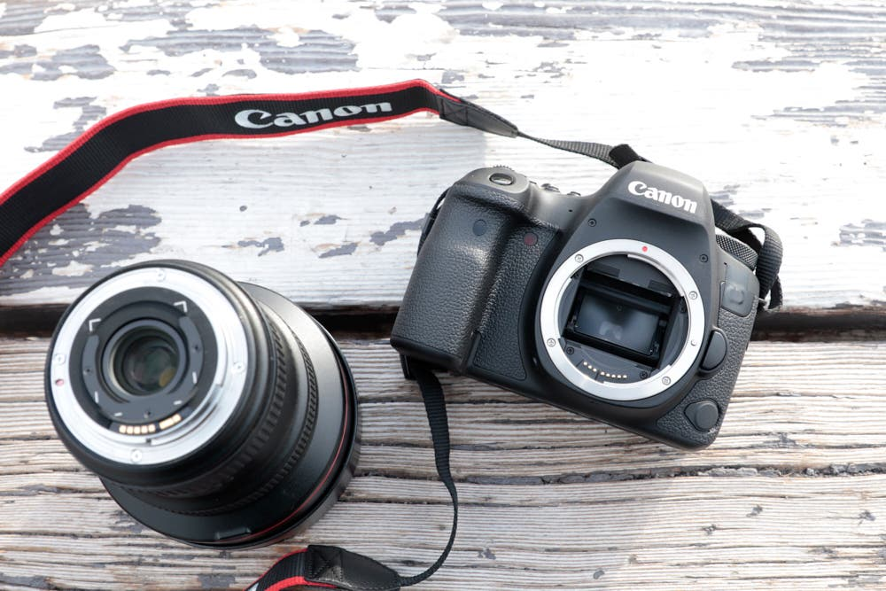 First Impressions: Canon 6D Mk II