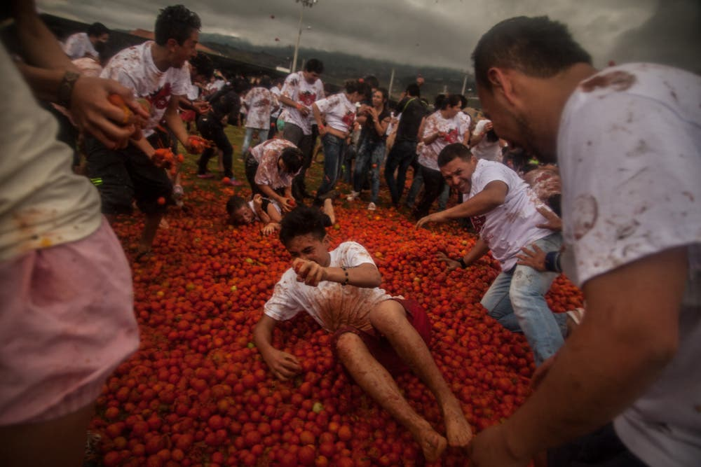 Juan Torres: Photos From the La Tomatina Tomato Throwing Festival in Columbia