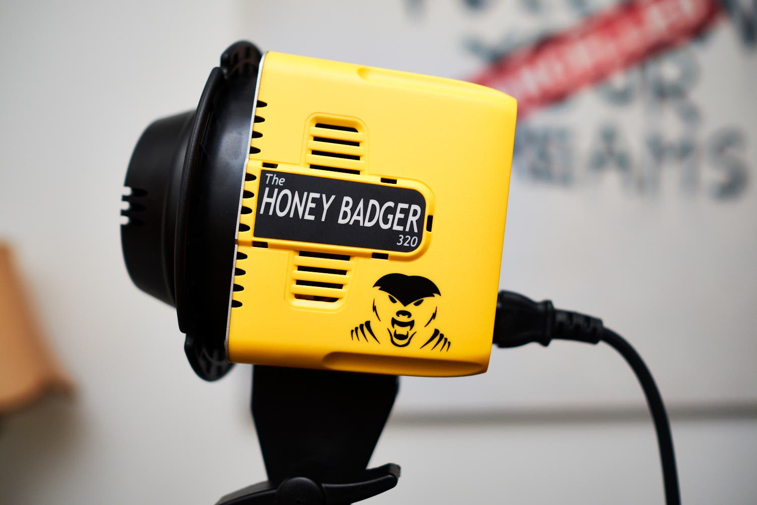 Review: Interfit Honey Badger Monolight (NSFW)