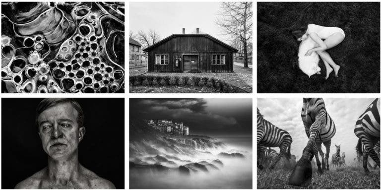 Winners of monovisions black and white photography awards 2017 announced